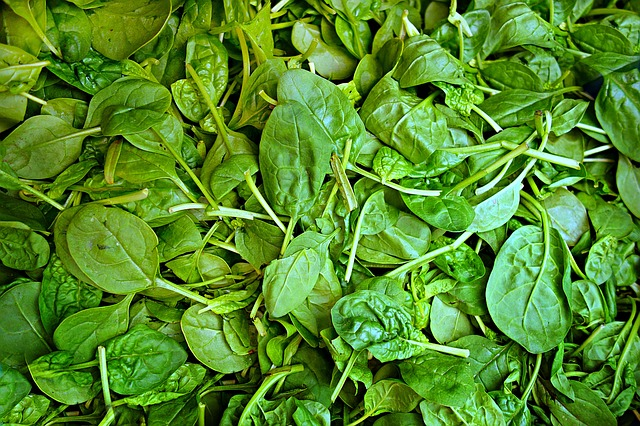 Eating Your Greens – So What's All The Fuss About?